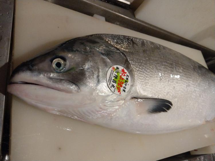 小田原港など各地から食材が届きます