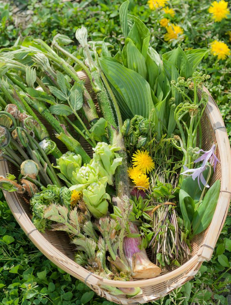 産直野菜はすぐ売り切れるほどの人気!
