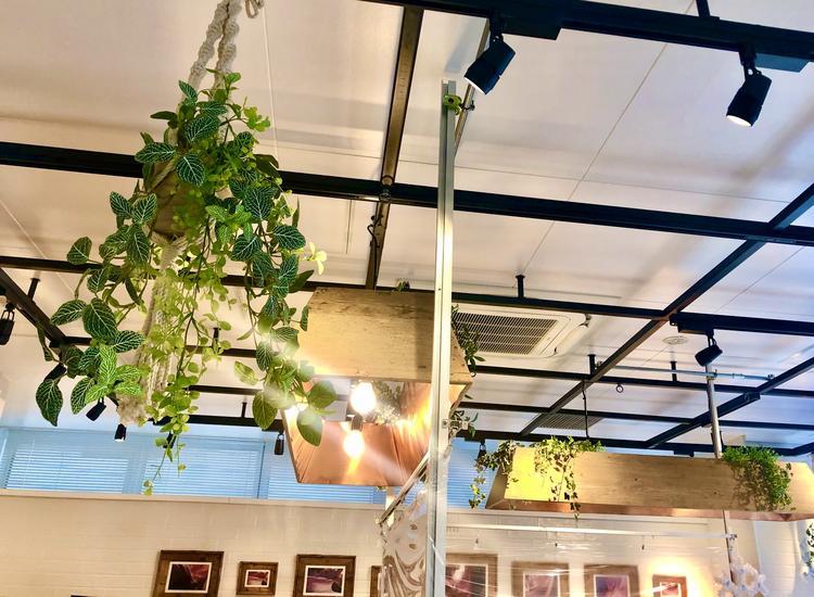 店内にも緑が多く癒しの空間を演出。