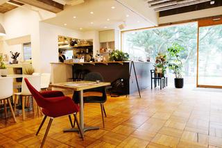 3331 cafe UBUNTU