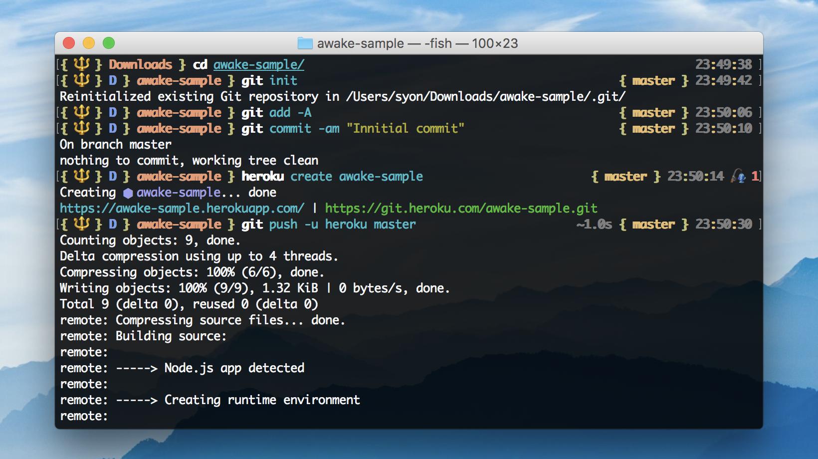 Terminal screen shot