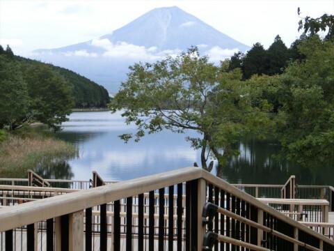 田貫湖から望む富士山