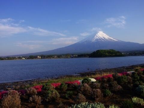 大石公園から見る富士山