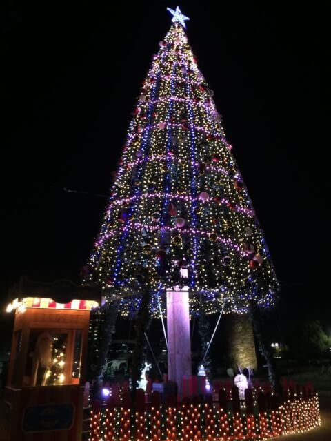 Christmastreeillumination