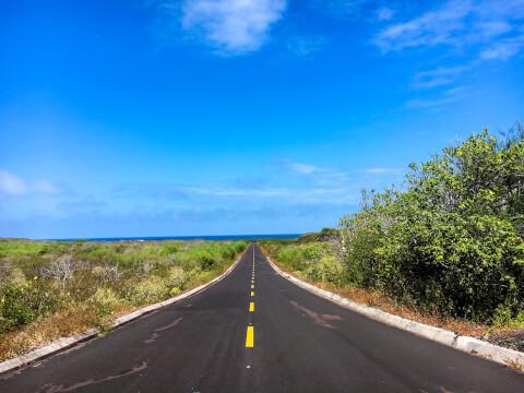 イサベラ島の景色