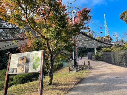 松山城ロープウェー
