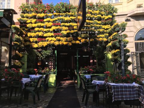 ベオグラードにあるカフェ