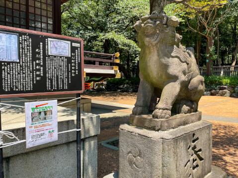 十二社熊野神社の狛犬