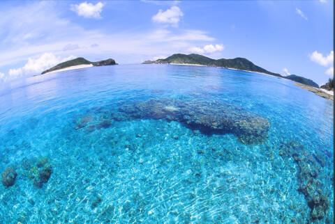 阿嘉島-ビーチスポット