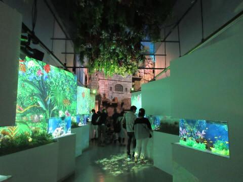 マクセルアクアパーク品川 展示