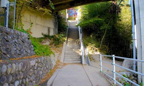あの花:秩父橋横の階段(実写)