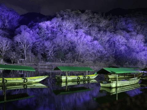 京都・嵐山花灯路-2020 関西 イルミネーション おすすめ 2020