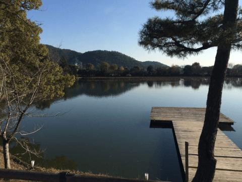 嵐山大覚寺池