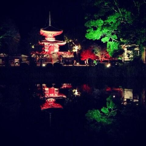 嵐山大覚寺夜
