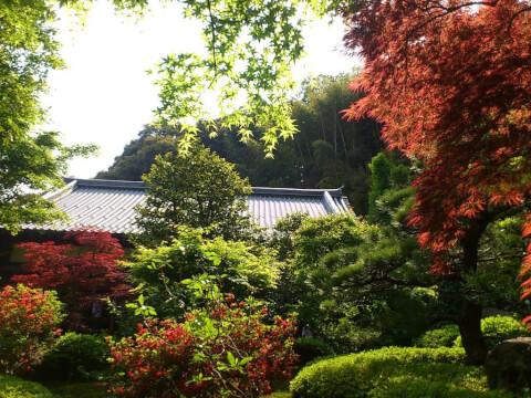 嵐山鈴虫庭