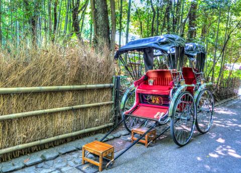 嵐山竹林力車