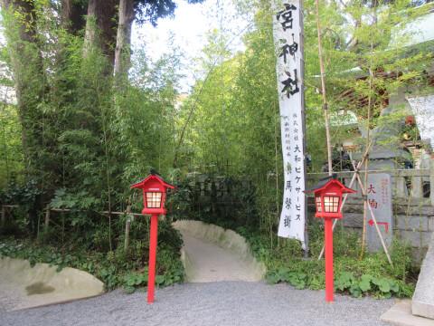 来宮神社内にある「楠への小路」