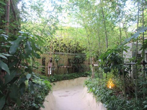 熱海の観光スポット「来宮神社」の小道