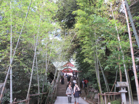 熱海の観光スポット「来宮神社」の道