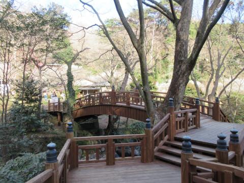 熱海梅園の梅園五橋