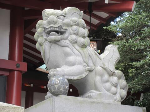来宮神社の境内にある狛犬