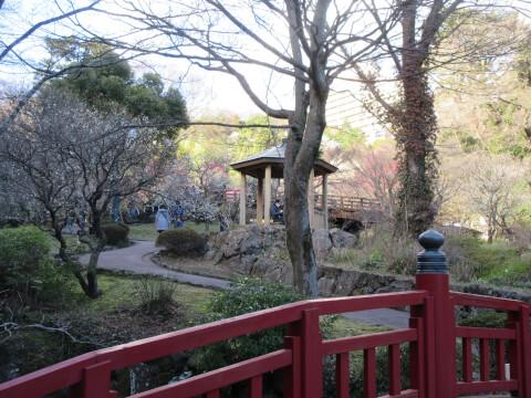 熱海梅園の駐杖橋の景色