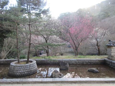 熱海梅園「韓国式庭園」の方池円島