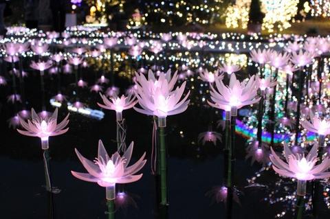 あしかがフラワーパーク 光の花の庭 栃木 関東 おすすめ イルミネーション