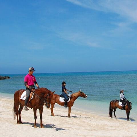 horse_ride