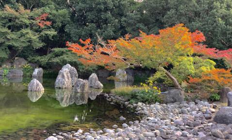 日本庭園  万博記念公園