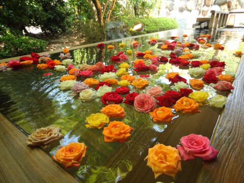 三朝温泉 バラ湯