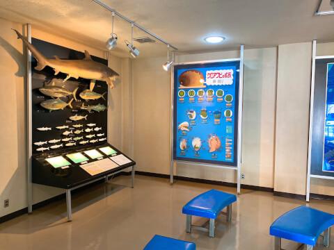 海の資料館