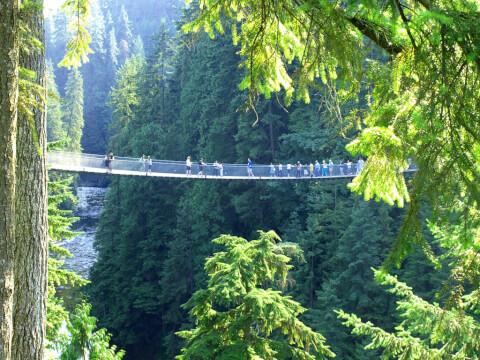 キャピラノ吊り橋 カナダ