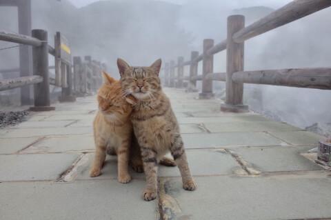 長崎 温泉