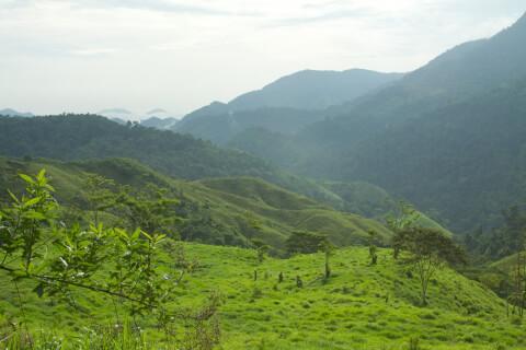 シエラネバダ・デ・サンタマルタ国立公園