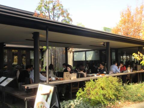 蔦屋書店 カフェ