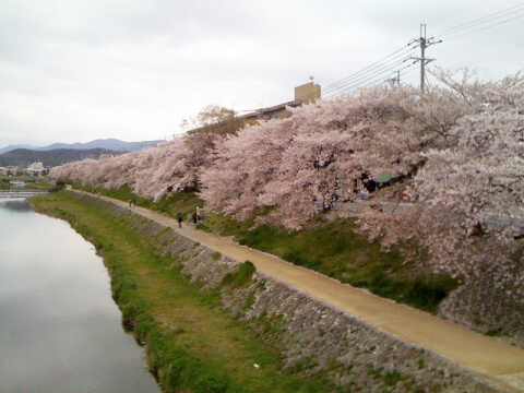 kyoto_dating_demachiyanagi