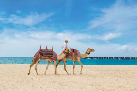 ドバイのおすすめ観光シーズン、人気観光地