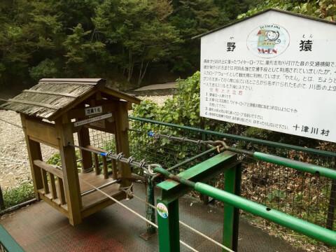 十津川村野猿