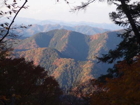 高尾山 関東 おすすめ パワースポット