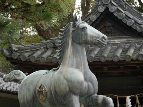藤森神社の新馬