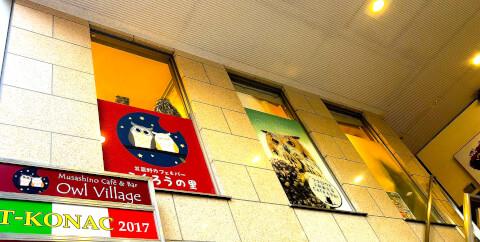 fukurou-cafe