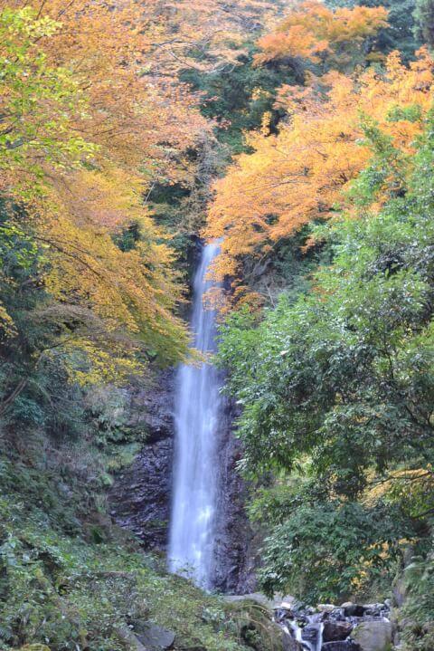 岐阜観光養老の滝