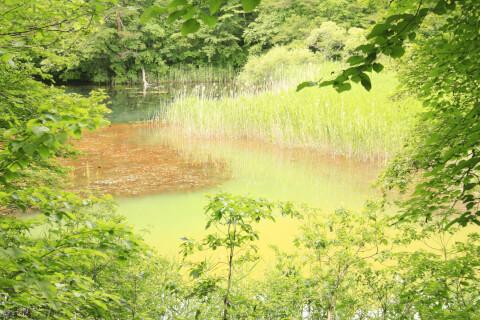 日本 絶景 福島 五色沼 みどろ沼