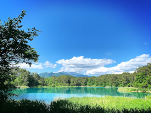日本 絶景 福島 五色沼