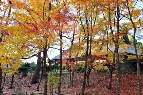 三笠宮記念公園