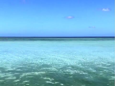 グアム タモントレードセンター フジタビーチ