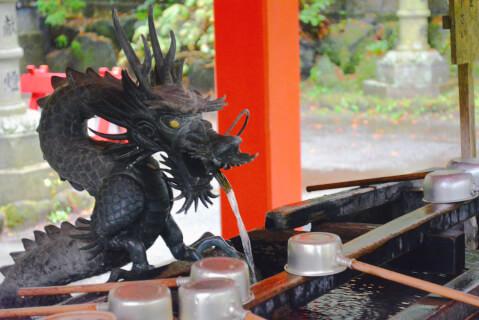 箱根神社 手水舎の龍