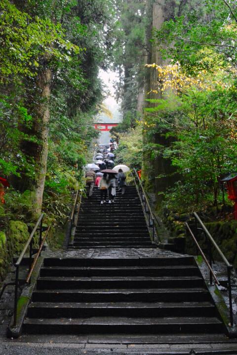 箱根神社 階段