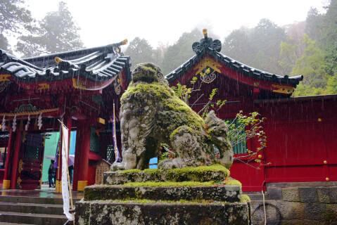 箱根神社 右の狛犬アップ